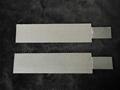 Platinum titanium mesh 2