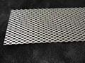 Platinum titanium mesh 4