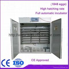 holding 1848 egg hatching machine
