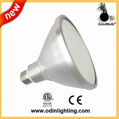 Waterproof IP67 ETL ce rosh approved led par38 lamp 13W
