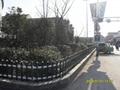 天津英世护栏厂家直销pvc护栏围栏 3
