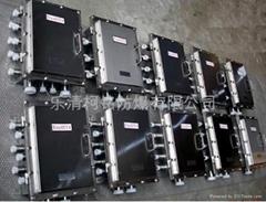 不锈钢焊接防爆配电箱