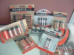 PowerCell Alkaline Batteries: AA,AAA,C,D,9-Volts