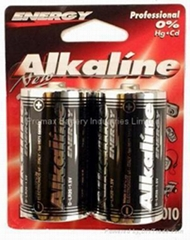Piles Alcalina D-Size Battery(LR20 / AM1) MN1300