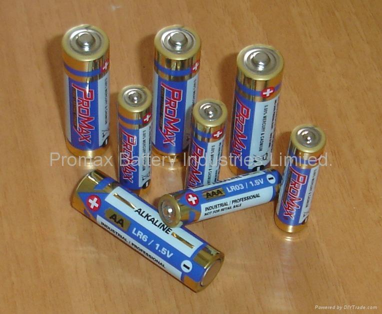 "The Best ""Promax"" Gold Alkaline Batteries AA,AAA,C,D,9-volt"