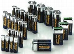 Professional Alkaline Batteries-LR20,LR14,LR6,LR03,6LR61
