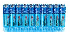 Premium Industrial Alkaline Batteries AA, AAA, C, D, 9V