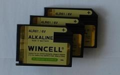 "Medical Alkaline Batteries ""J"" Type 6V, 7K67, 539, KJ, 4LR61, 1412AP"