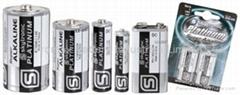High Capacity Alkaline Batterien 1.5V BABY LR14 C-Size(MN1400)