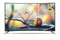50Inch Curved Metal Frame With Explosion Proof Screen DLED Color TV 5