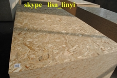 OSB BOARD/OSB 3/waterproof osb/building materials for house