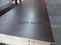reusable marine plywood for concrete formwork