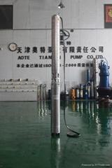 耐腐蚀海水潜水泵
