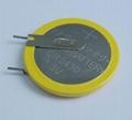 CR2430 Lithium Button Cell 2