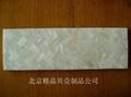 decorative shell tiles