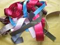 箱包织带 4