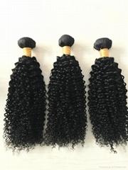 8A unprocessed virgin hair brazilian virgin hair curly 3 bundles free shipping