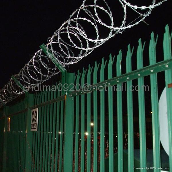 Concertina Razor Barbed Wire 3