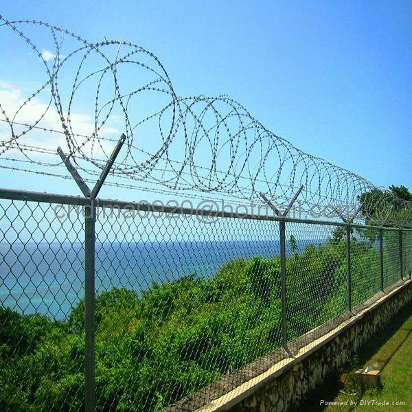 Concertina Razor Barbed Wire 5