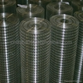 Ga  anized and PVC Coated Welded Wire