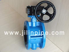Flange Type Butterfly Valve