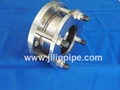 Stainless Steel flange adaptor 1