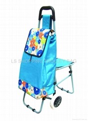 shopping trolley bag wit