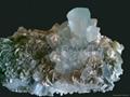 彩石,奇石,矿物标本,化石等 1