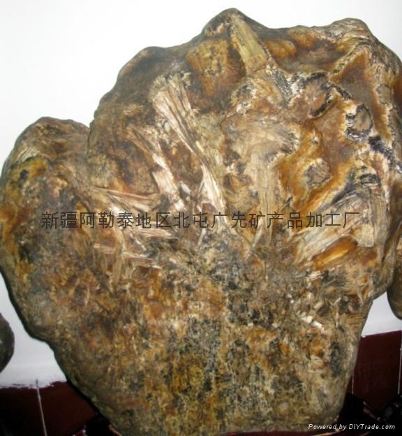 奇石变质岩 2