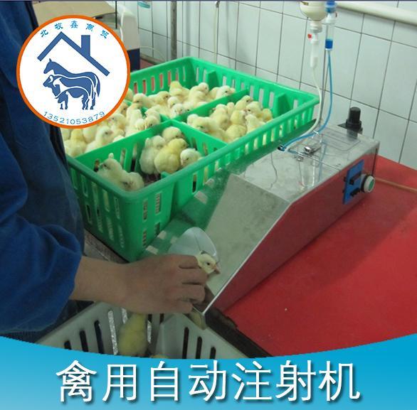 禽用疫苗注射机 3