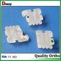 Denxy Dental Supplies Orthodontic material supplier ceramic bracket 20