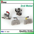 2nd molar metal buccal tube