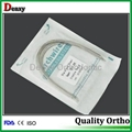 Dental Stainless steel archwire Orthodontic