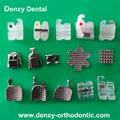 Dental Bracket Orthodontic Bracket Orthodontic braces dental supply