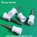 Accessory Dental Disposable Latch Type  Flat  prophy brushes 5
