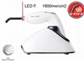 Woodpecker light cure dental curing light LED curing light