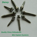 Stainless Steel mini implant Orthodontic Dental mini implant orthodontic screw