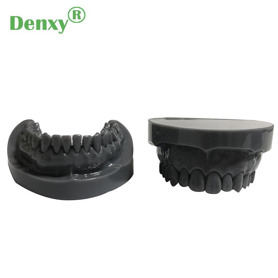 Denxy Dental Study Teeth Model Dental Teeth Model Typodont Dental Equipment 1