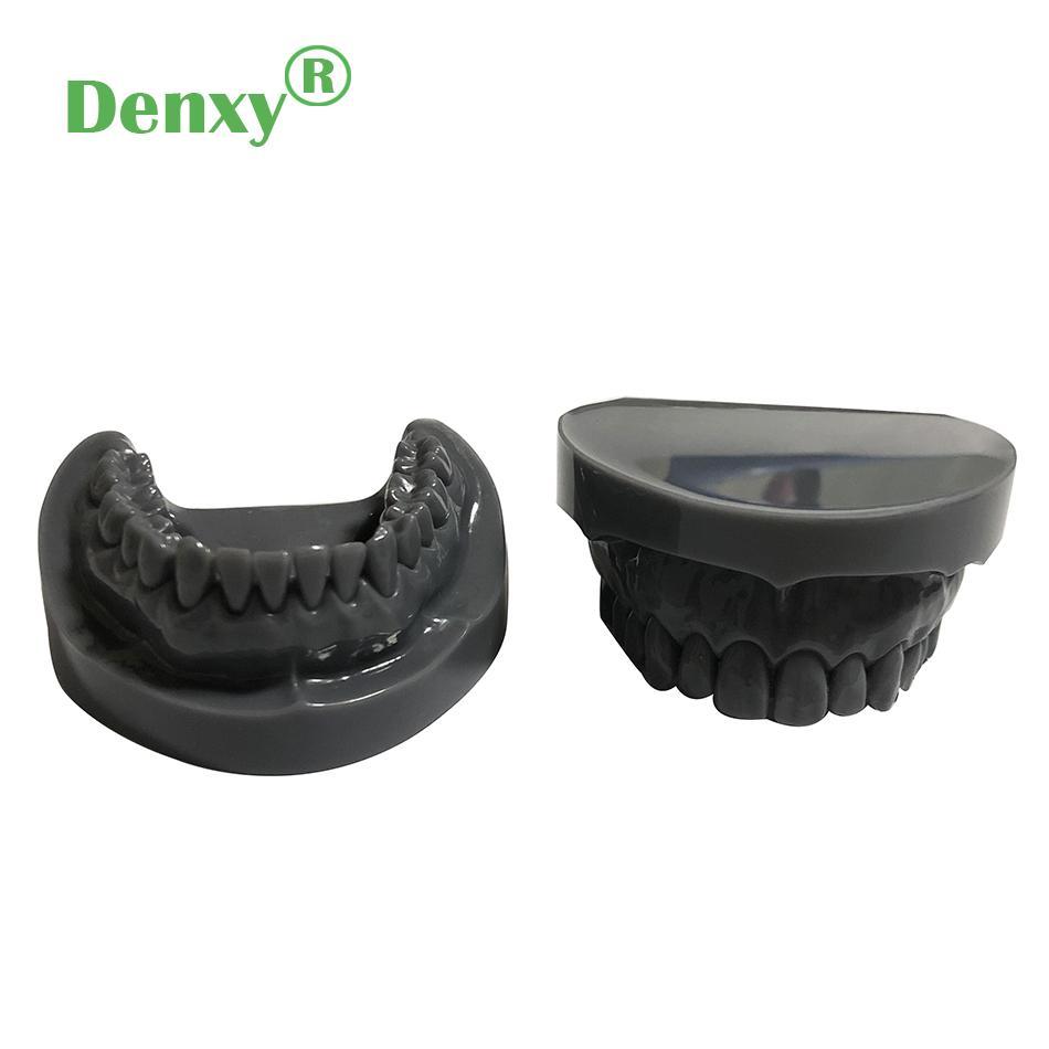 Denxy Dental Study Teeth Model Dental Teeth Model Typodont Dental Equipment 3