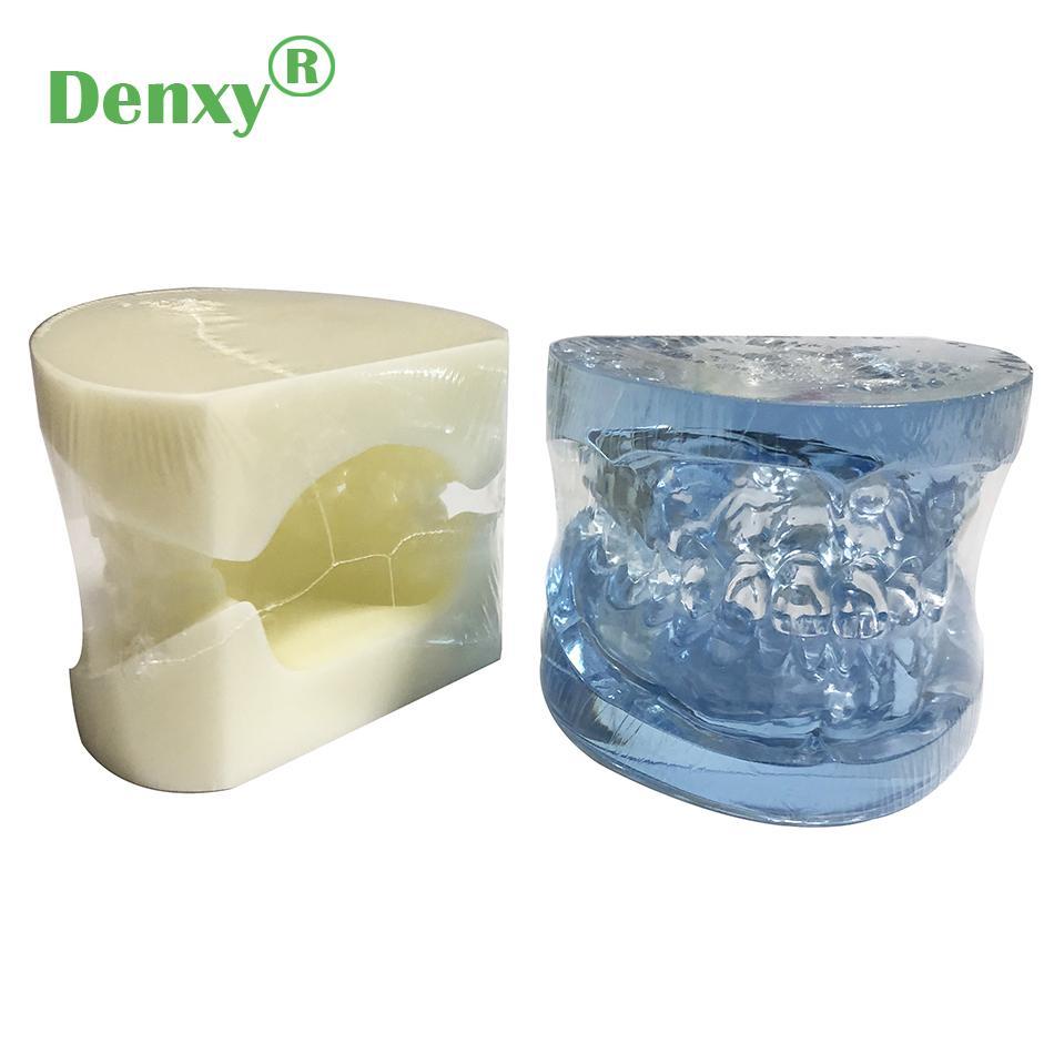 Denxy Dental Study Teeth Model Dental Teeth Model Typodont Dental Equipment 6