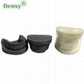 Denxy Dental Study Teeth Model Dental Teeth Model Typodont Dental Equipment 2