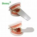Double Side Dental Reflector Intraoral Photography Mirror Occlusal Photographic