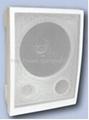 wall  speaker YWS6507T