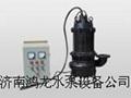 污水处理专用潜水搅拌污泥泵 4