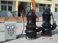 耐磨污泥泵 4