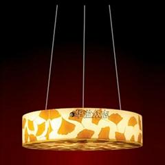 建築裝飾用高透光性能透光板