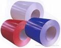 PPGI  Colour Coated Coil (in stock)