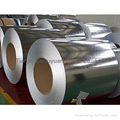 China BS1387 galvanized seamless steel plate&coil supplier