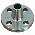 Tianjin Stainless steel Flanges supplier (in stock) 3