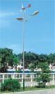 Wind-light complementary street light